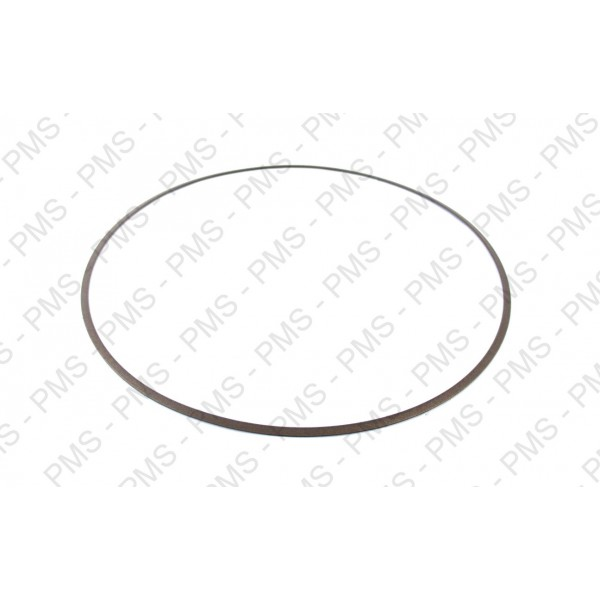 ZF 0734 317 326 SUPPORT RING