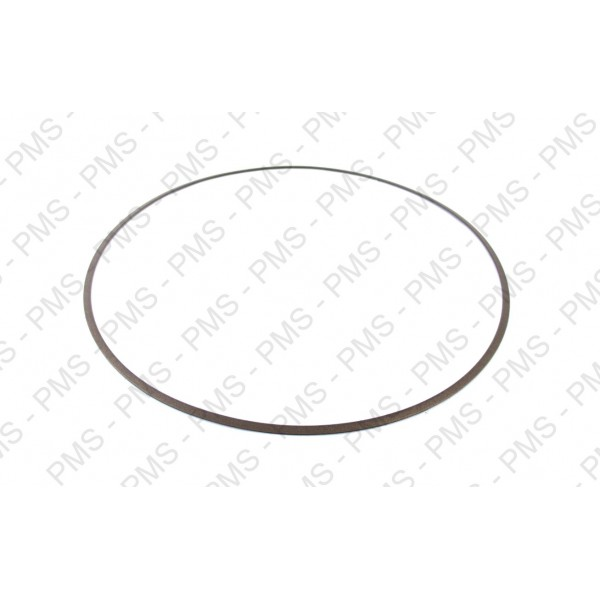 ZF 0734 317 327 SUPPORT RING